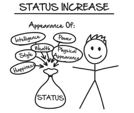 Expert Secrets - Améliorer son statut social